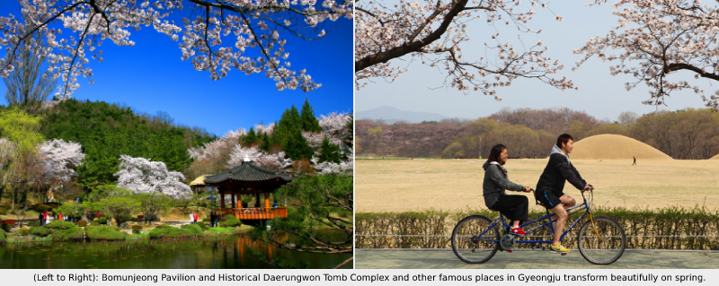 Korea Five Destinations to Wow your Delegates this Spring Gyeongju