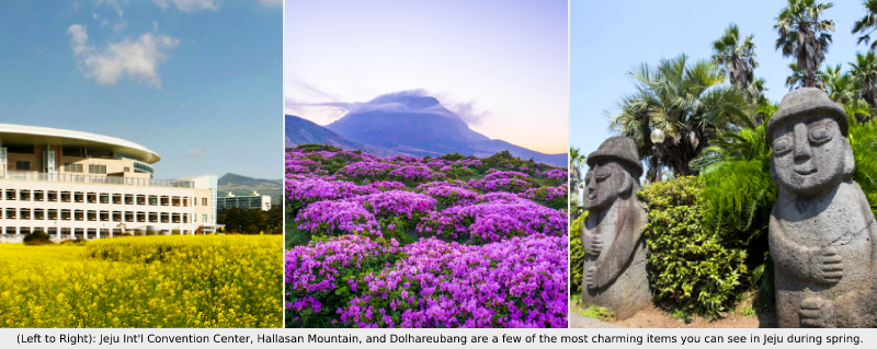 Korea Five Destinations to Wow your Delegates this Spring Jeju