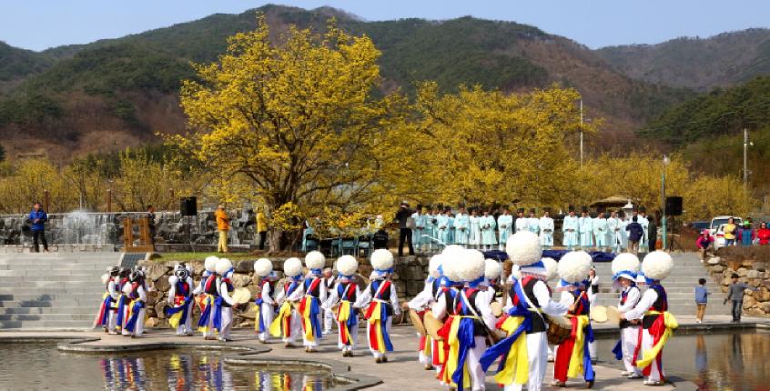 Gurye Sansuyu Festival
