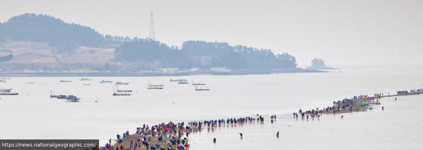 Jindo Miracle Sea Parting Festival