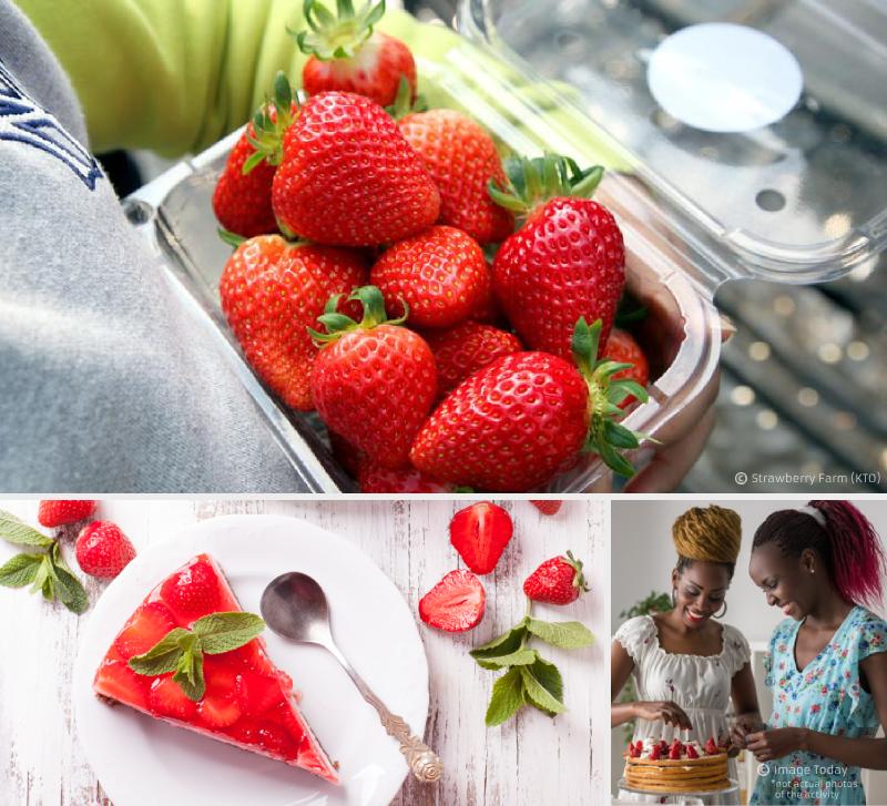 5. Building a team spirit in a Strawberry farm