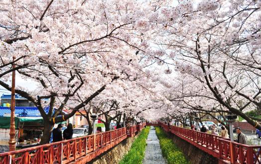 Changwon-si thumbnail